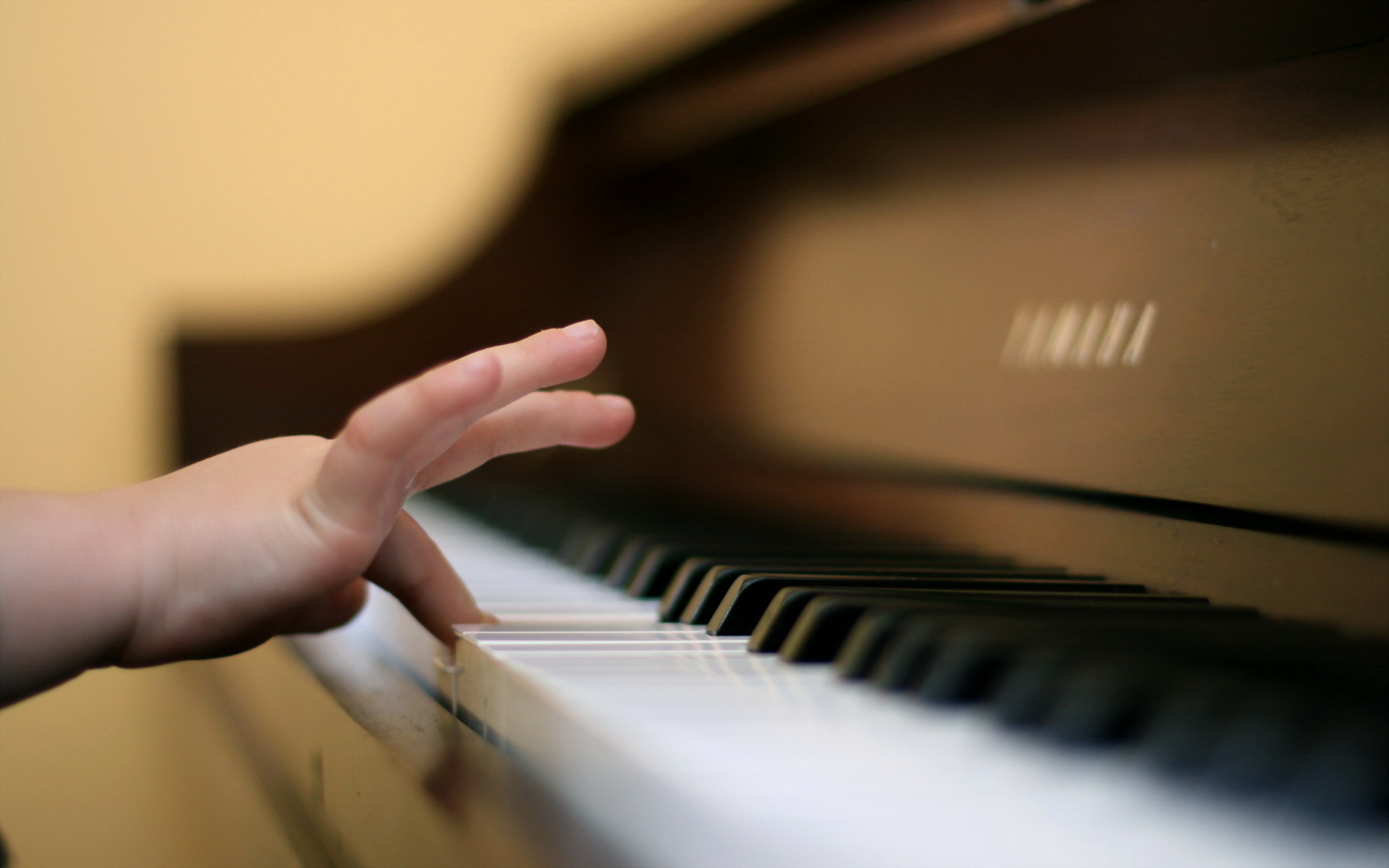 essay - my hobby is playing piano