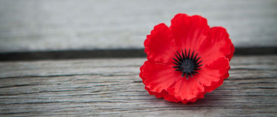 lest-we-forget-20111111111111